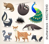 colorful cartoon animals from... | Shutterstock .eps vector #440278540
