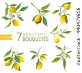 vintage fruits  flowers and... | Shutterstock .eps vector #440479858