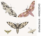 big butterfly   vector pattern. ... | Shutterstock .eps vector #440623543