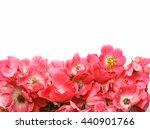 horizontal border made from... | Shutterstock . vector #440901766