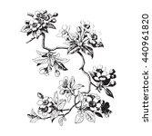 leaves isolated tree wallpaper... | Shutterstock . vector #440961820
