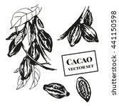 cacao vector set. vector... | Shutterstock .eps vector #441150598
