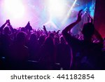 crowd at popular music concert. | Shutterstock . vector #441182854