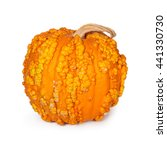 Halloween Pumpkin Covered In...