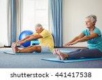 side view of seniors doing... | Shutterstock . vector #441417538
