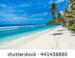 tropical beach in seychelles ... | Shutterstock . vector #441438880