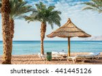 relaxing atmosphere on central... | Shutterstock . vector #441445126