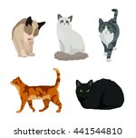 cat set | Shutterstock .eps vector #441544810