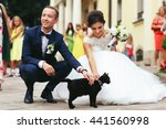 Stock photo newlyweds stroke a black cat on the street 441560998
