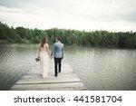 charming bride  elegant groom... | Shutterstock . vector #441581704