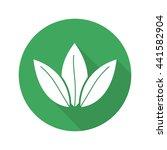 tea leaves flat design long...   Shutterstock .eps vector #441582904