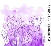 Crocuses. Flowers Line Drawn O...
