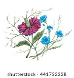 flowers of provence | Shutterstock . vector #441732328