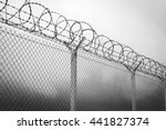 barbed wire   restricted area ... | Shutterstock . vector #441827374