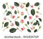 pink roses on white background. ...   Shutterstock . vector #441834769