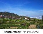 farming village in the... | Shutterstock . vector #441910393