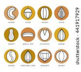 set of flat different nuts.... | Shutterstock .eps vector #441917929