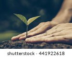 hands growing a young plant  ... | Shutterstock . vector #441922618