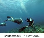 utila  honduras   circa july... | Shutterstock . vector #441949003