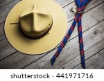 boy scout costume | Shutterstock . vector #441971716
