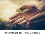 hands of farmer growing and... | Shutterstock . vector #441975598