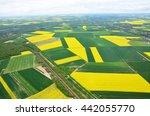 Blooming Rapeseed Field In...