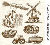 farmer harvesting wheat. hand... | Shutterstock .eps vector #442074940
