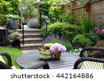 small townhouse perennial... | Shutterstock . vector #442164886