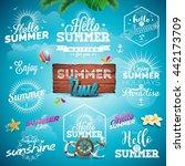 vector summer typography... | Shutterstock .eps vector #442173709
