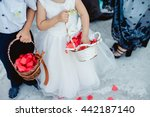 cute little boy and girl in a... | Shutterstock . vector #442187140