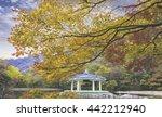 beautiful autumn in naejangsan... | Shutterstock . vector #442212940