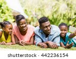 happy family taking a photo at... | Shutterstock . vector #442236154