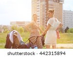 two young mothers walking with... | Shutterstock . vector #442315894