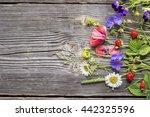 Summer Still Life Flowers...
