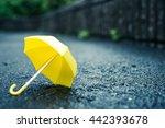 rainy day  umbrella | Shutterstock . vector #442393678