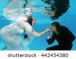 bride and groom  underwater... | Shutterstock . vector #442454380