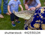Man Holding Crocodile On...