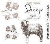 sheep 1. sheep breeding. set of ...