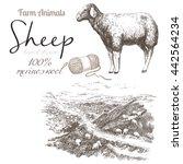 Sheep 2. Sheep Breeding. Set O...