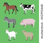 the different animals living on ... | Shutterstock .eps vector #442592668