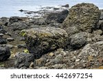Fallen Giant Volcanic Boulders...