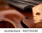 macro of a violin on black...   Shutterstock . vector #442724140