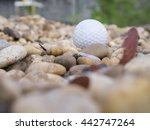 golf ball on the lawn   golf... | Shutterstock . vector #442747264