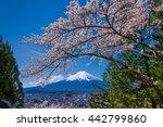 fuji mountain and cherry... | Shutterstock . vector #442799860