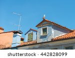 Seagull Sits At The Roof Of Th...