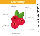 cranberry nutrient of facts and ... | Shutterstock .eps vector #442979710