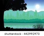 beautiful nature   vector... | Shutterstock .eps vector #442992973