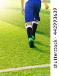 soccer player ready to play at... | Shutterstock . vector #442993639