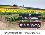 Hokkaido  Japan   6 Jul 2014 ...