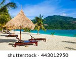 this is the vacation time show... | Shutterstock . vector #443012950